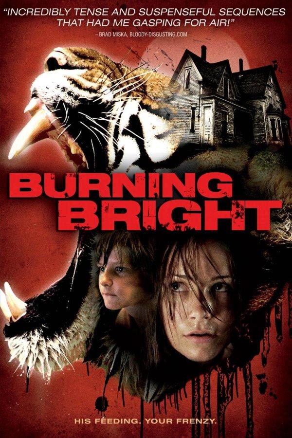 burningbrightdvd.jpg