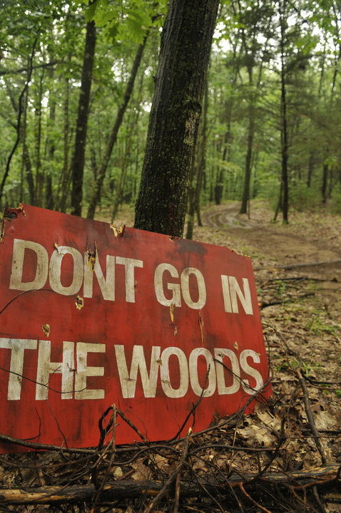 dontgoinwoods (8)