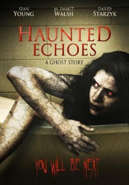 hauntedechoesdvd.jpg